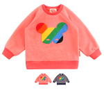 Basic rainbow pino fur sweatshirt